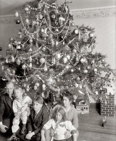 1915 vintage christmas trees